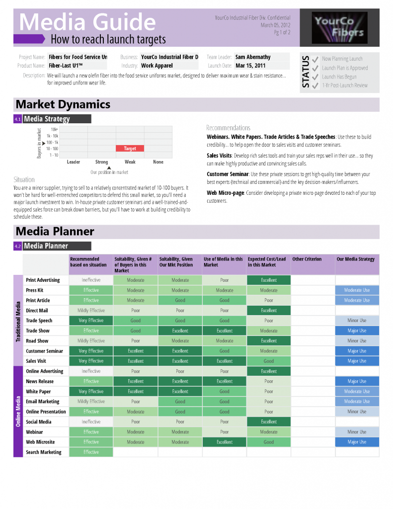 Document showing market dynamics, media planner, and media records designed to share with launch stakeholders