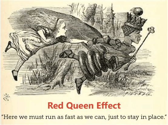 "The Red Queen Effect - ""Here we must run as fast as we can, just to stay in place."""