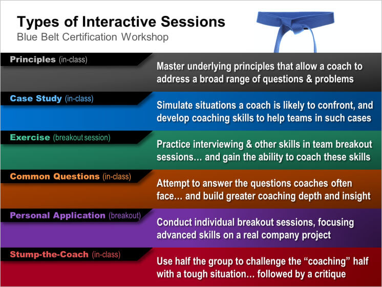 Types of interactive sessions in Blue Belt Workshops