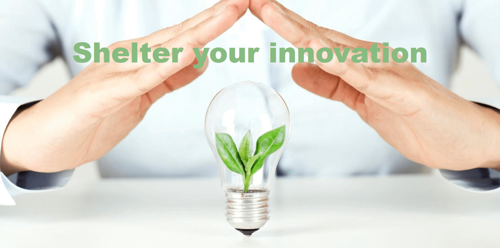 B2B-Leaders-Should-Shelter-Their-New-Product-Innovation-Teams